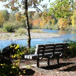 middle-fork-bench